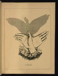 Un livre d'ombromanie en 1860