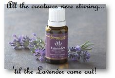 Pocketful of Treasures: 'Twas the Night Before School - Winding Down with Essential Oils