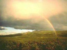 """""""Rainbow Connection""""  Sarah Mclachlan"""