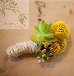 rustic billy button, succulent, berry and twine buttonhole www.jademcintoshflowers.com.au www.somethingbluephotography.com.au