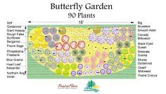 57 best butterfly hummingbird garden images in 2019 - Butterfly and hummingbird garden designs ...