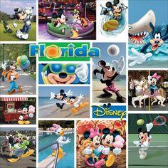 Disney Paper 12 Inch X 12 Inch-Mickey Florida