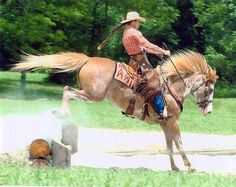 Missouri Dude Ranch Trail Ride and Cabin Vacations Dude Ranch Vacations, Cabin Vacations, Real Cowboys, Guest Ranch, Trail Riding, Missouri, Have Fun, Racing, Vacation Ideas