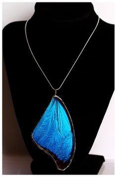 Real Butterfly Wing Necklace. Blue Morpho Butterfly.