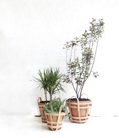 Leather Planters + Terra-cotta Pots