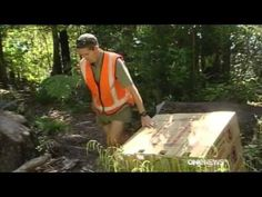 Project Janszoon stoat trapping network - YouTube