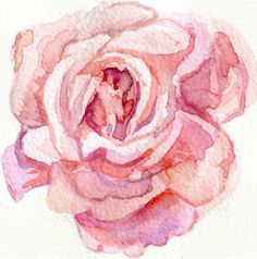 Image result for abstract rose watercolour