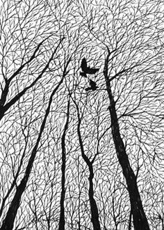 pen and ink - Art Drawings Art And Illustration, Black And White Illustration, Pattern Illustrations, Illustration Pictures, Black And White Drawing, White Art, Black Art, Black Pen Drawing, Black Pen Sketches