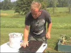 How to Grow Plants from Seed : How to Plant Seeds