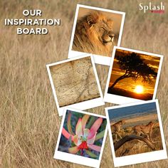 Get inspired from our moodboard and take a guess of what our new category is called!  #Inspiration #MoodBoard