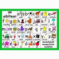 The alphabet Gaeilge Ireland Language, Irish Language, Primary Teaching, Teaching Resources, Alphabet For Kids, Family Roots, Language Lessons, Irish Eyes, Celtic