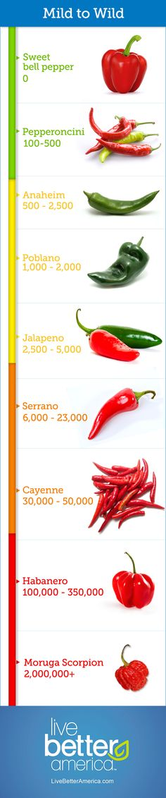 All About Chile Peppers