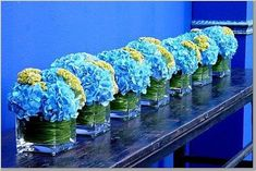 Hydrangea centerpiece in square vase - like using the leaves to cover stems Blue Wedding Flowers, Blue Flowers, Wedding Colors, Wedding Blue, Wedding Bouquet, Summer Wedding, Fish Wedding, Blue Weddings, Turquoise Flowers