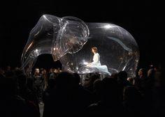 Helium Ballonnen.: OpblaasbareTransparante Olifant