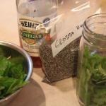 Lemon Balm Lavender Bugs Off Spray- KEEP BUGS OFF OF YOU