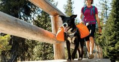 5 Dog Backpacks for Your Next Outdoor Adventure