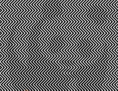 If you look at this image you should see a panda. Illusions Mind, Funny Illusions, Optical Illusions, Eye Tricks, Mind Tricks, Op Art, Hidden Pictures, Funny Pictures, Maze Tattoo