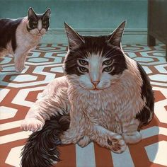 rebloggy.com post art-trippy-eyes-drugs-lsd-dream-cats-imagine-acid-psychedelic-trip-colors-confus 76997731067