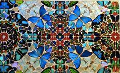 Eco Friendly Real Butterfly Wing Jewelry & Art by ChrysalisStudios