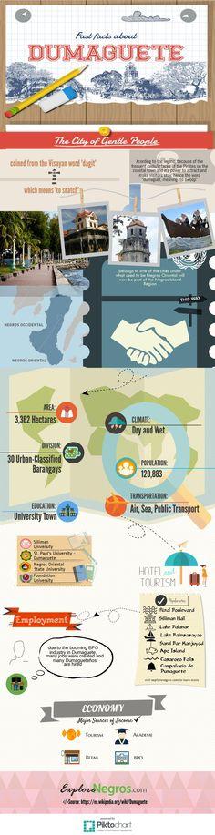 Dumaguete City Infographics