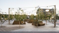 UC San Francisco 4th Street Plaza / CMG Landscape Architecture