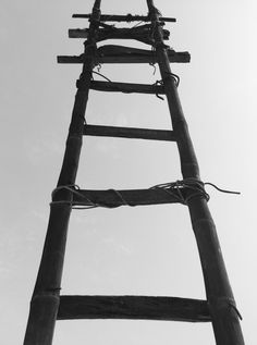 👌 Get this free picture Black Bamboo Ladder during Daytime    🆕 https://avopix.com/photo/44001-black-bamboo-ladder-during-daytime    #black #business #design #rack #home #avopix #free #photos #public #domain