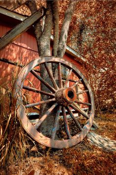 * * I DO HAVE ONE SLIGHTLY CROOKED WHEEL UPSTAIRS,BUT EVERYTHING IS TICKING ALONG FOUR-O; THANK YOU VERY MUCH. ~Stephan King - The Bachman Books