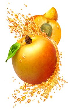 Fruit illustration by Paul Roget