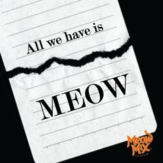 All we have is meow!