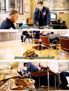 Jimmy: Hey guys, the tortoise is getting away. Dawson: Mouch? You gonna stop it? Mouch: What's the rush? (4x08)