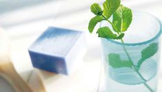 Mint improves the flow of bile from the liver