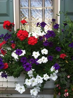 Window box ....I need 3 for the front of our home.