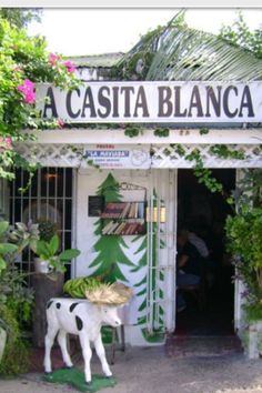 La Casita Blanca, calle Tapia Villa Palmera!!!!