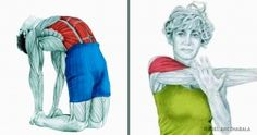 These illustrations explain which muscles you're stretching