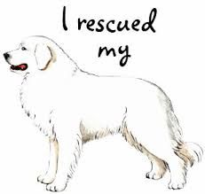 Great Pyrenees Clipart Google Search Great Pyrenees Pyrenees