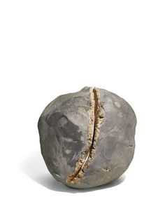 Lucio Fontana 1899 - 1968 CONCETTO SPAZIALE, NATURA incised with the artist's initials on the underside, terracotta 22.2 by 21.5 by 22.2cm. Executed in 1959-60.