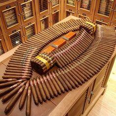 Cigar Humidor, Cigar Bar, Good Cigars, Cigars And Whiskey, Cheap Cigars, Whiskey Room, Cigars And Women, Cigar Shops, Cigar Club