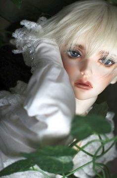 RSDOLL DOLL 【期間限定】ORVIL | 総合ドール専門通販サイト - DOLKSTATION(ドルクステーション) Barbie, Realistic Dolls, Pretty Dolls, Custom Dolls, Bjd Dolls, Ball Jointed Dolls, Art Photography, Beautiful, Peony