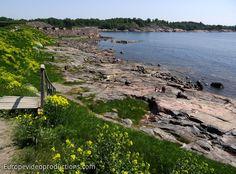 Suomenlinna fortress in Helsinki Finland: UNESCO World Heritage site