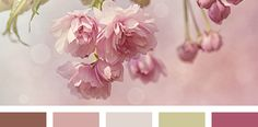 Color Palette #1285