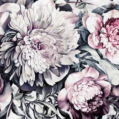 Dark Floral II Sanded Fresco - Floral Wallpaper - by Ellie Cashman Design