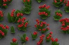 Jardín de flores nanoscópicas | Cuidar de tus plantas es facilisimo.com