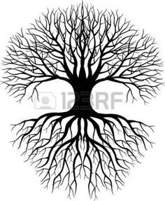 Силуэт дерева photo