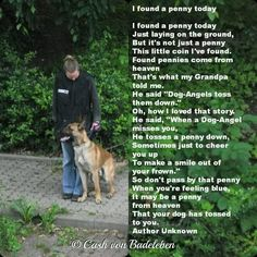 Dog angel pennies ~ a pennie or another something of significance to you and your dog angel (feeling or object) Pet Loss Quotes, Dog Quotes, Mans Best Friend, Best Friends, Pet Poems, Animals And Pets, Cute Animals, Rainbow Bridge, In Loving Memory