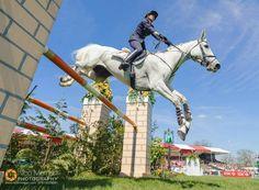 Vittoria Panizzon and Borough Pennyz - Badminton Horse Trials 2013