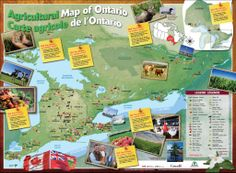 Agricultural Map of Ontario Grade 3 Science, Splash Page, Classroom Setup, Kids Education, Third Grade, Social Studies, Ontario, Map, Teaching