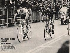 Milano-Sanremo 1967, 18 marzo. Eddy Merckx (1945) bissa il successo dell'anno precedente, precedendo in volata Gianni Motta (1943), Franco Bitossi (1940) e Felice Gimondi (1942).