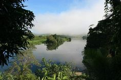 Daintree River morning mist Queensland #Australia. This is such a scenic place. A river boat can take you through one of the most picturesque spots in Australia. Huge crocodiles to spot too.