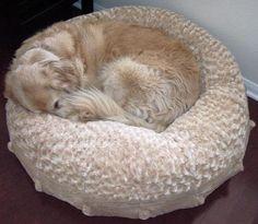 Plush Companion Katie Puff Dog Bed