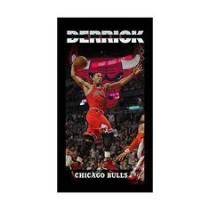"Steiner Sports Chicago Bulls Derrick Rose 10"" x 20"" Player Profile Wall Art, Multicolor"